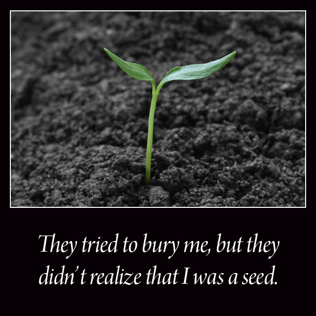 be a seed