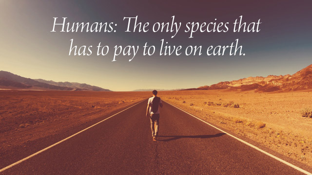 humans pay 2 live
